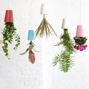 Boskke - Pot de fleurs retourné