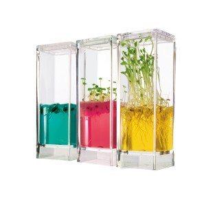 Laboratoire à plantes avec gel nutritif